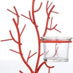 Red Coral Mumluk 17x11,5x23 Cm Mercan