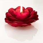 Majestic Rose Mum 11,8x11,3x5 Cm Kırmızı