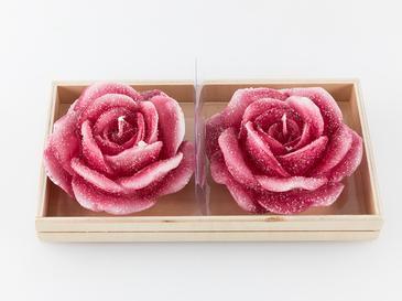 Rose Luster 2'li Mum 19,7x10x5,5 Cm Pembe
