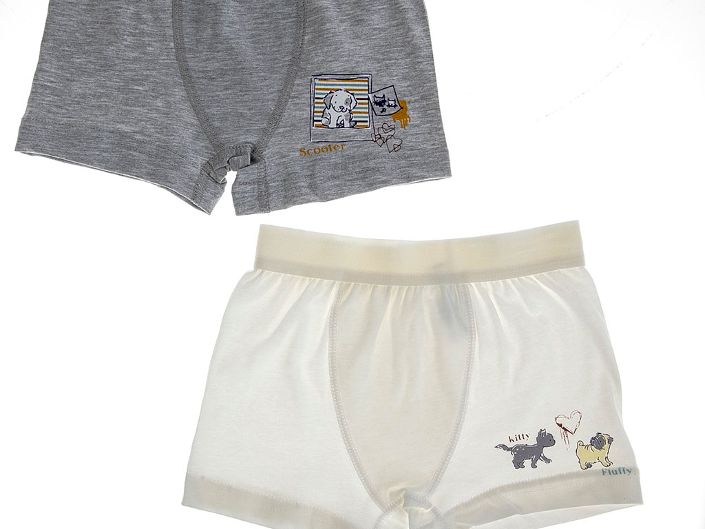 Nıkky Pamuklu Erkek 2'li Çocuk Boxer 2-3 Yaş Gri Melanj