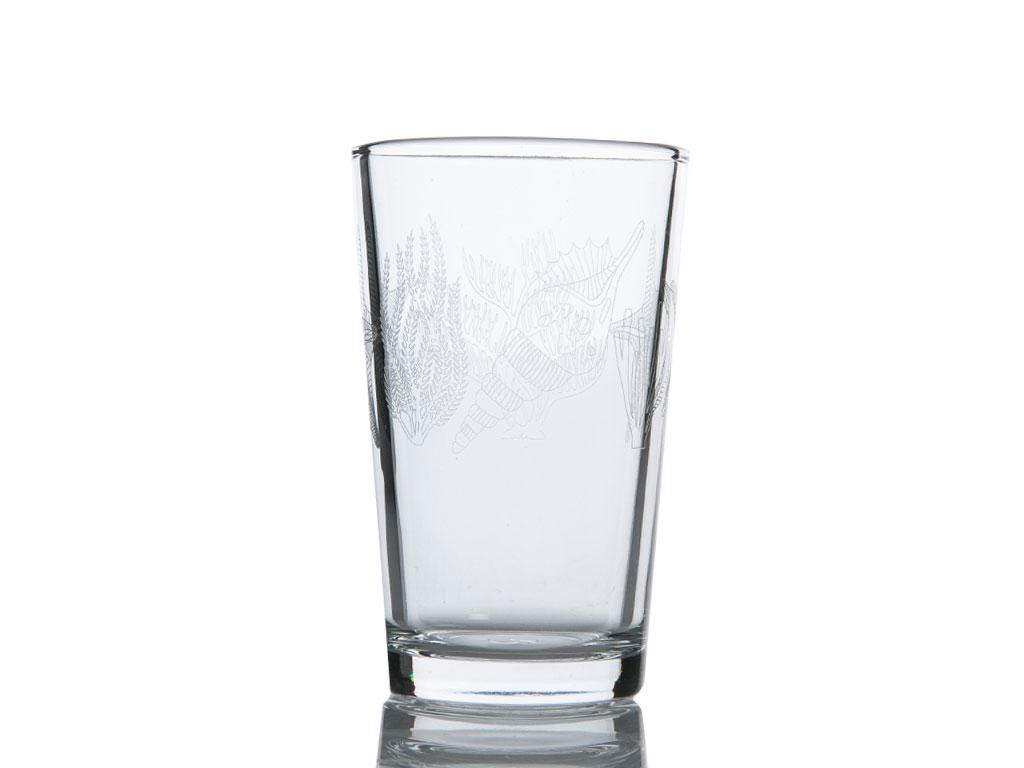 Desenli Cam 6'lı Kahve Yanı Su Bardağı 100 Ml Renkli