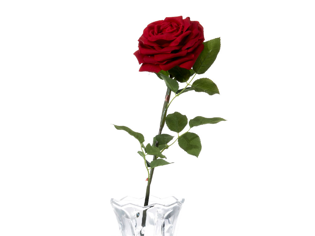 Glam Rose Yapay Çiçek 75 Cm Kırmızı