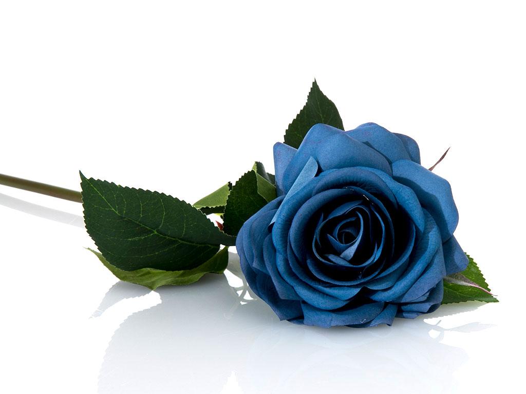 Glam Rose Yapay Çiçek 53 Cm Mavi