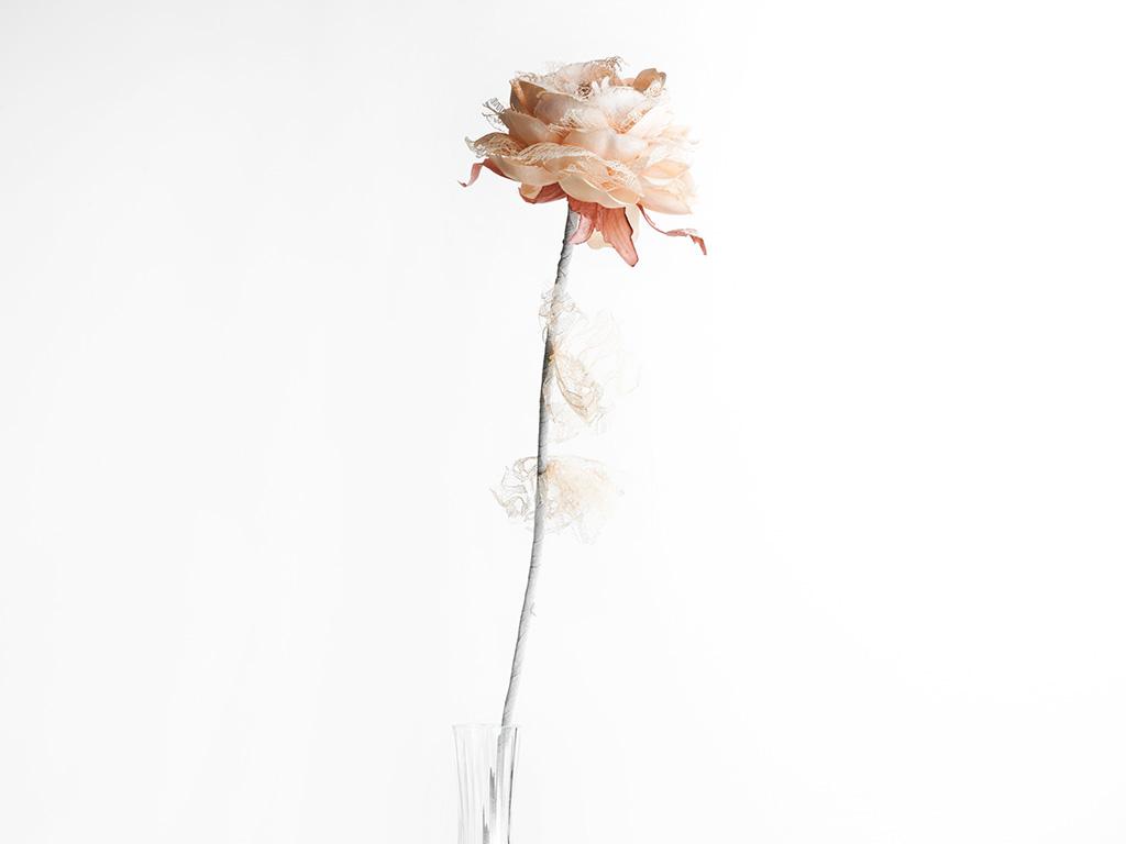 Rosse Polyester Yapay Çıçek 65 Cm Yavruağzı
