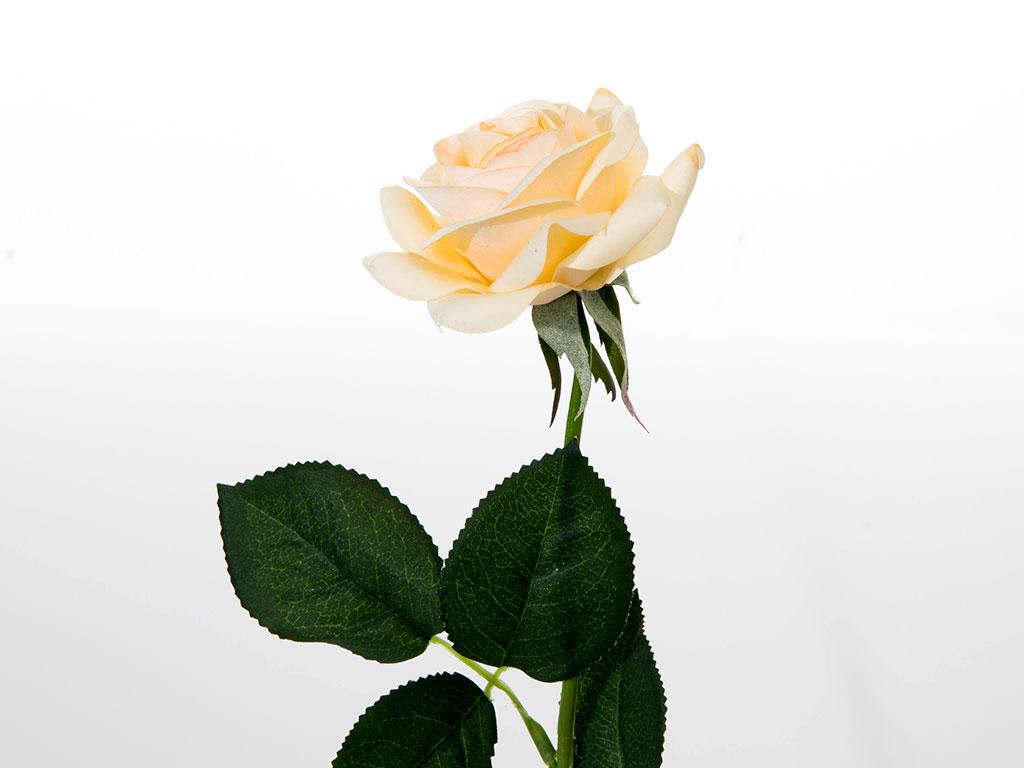 Glam Rose Yapay Çıçek 42 Cm Bej