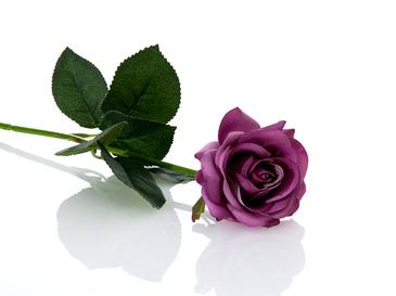 Glam Rose Yapay Çiçek 42 Cm Mor