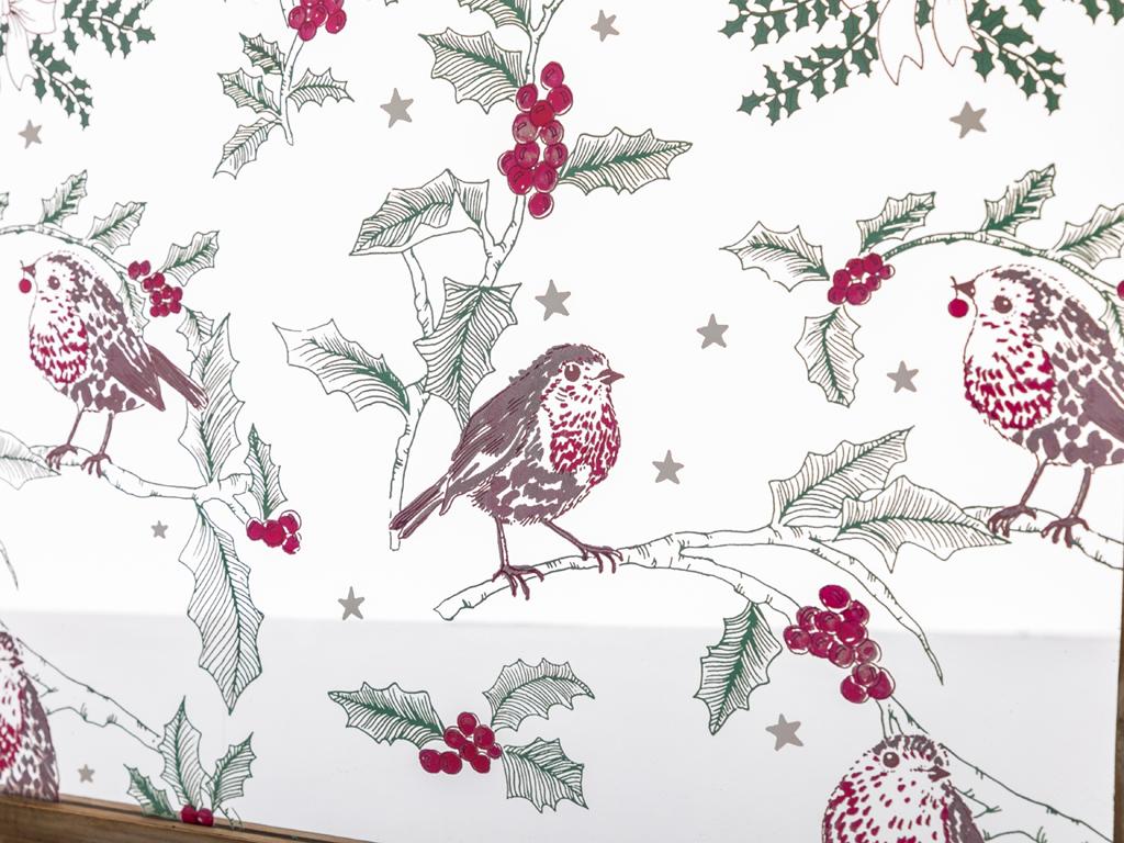 Robin Bird Tablo 30x40x1,8 Cm Renkli