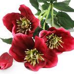 Rose Spray Yapay Çıçek 72 Cm Koyu Pembe
