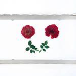 Antıque Rose Ferforje Küçük Tepsı 21,2x12x3,7 Cm Beyaz