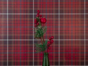 Darling Winter Plastik Yapay Çiçek 10x6x49 Cm Kırmızı