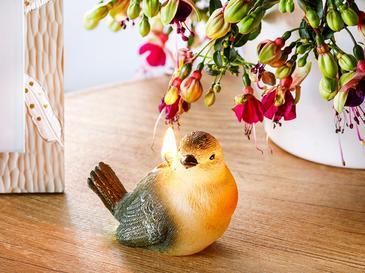 Cuttie Bird Parafin Mum 10x5,5x7 Cm Yeşil