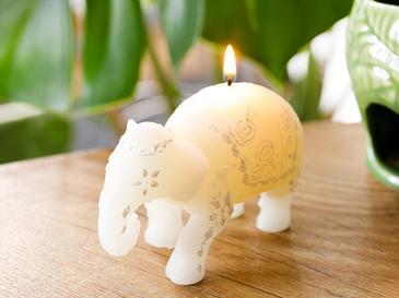 Elephant Parafin Mum 11X5X7,5 Cm Beyaz