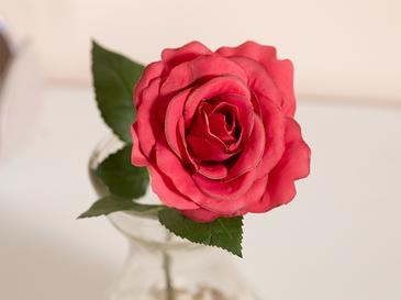 Lilies Kumaş Yapay Çiçek 20 Cm Kırmızı