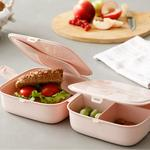 Rita Plastik 4 Bölmeli Lunch Box 13,0x13,0x9,5 Cm Pudra