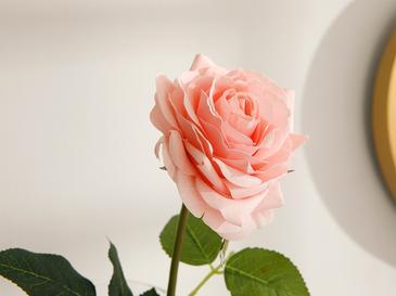 Canker Bloom Kumaş Tek Dal Yapay Çiçek 45 Cm Yavruağzı