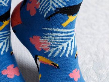 Toucan Pamuk Kadın Çorap Standart Mavi