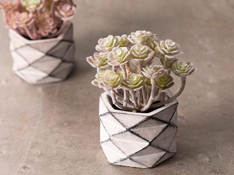 Succulent Ball Çimento Vazolu Yapay Çiçek 11,5x11,5x11,8 Cm Beyaz