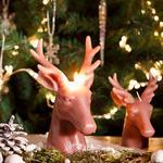 Sweet Deers Parafin Mum 9x9x13 Cm Pembe