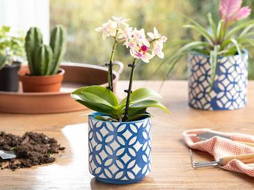 Garden Flowers Saksı 10.5x10.5x10.5 Cm Lacivert