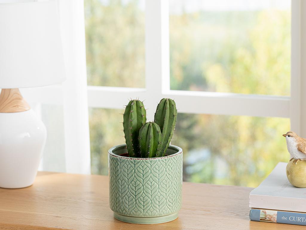 Leafy ghiveci 10.2x10.2x9.3cm Verde 10031052003
