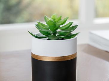 Crassula Vazolu Yapay Çiçek 7,5x7,5x10 Cm Siyah