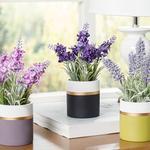 Lavender Seramik Vazolu Yapay Çiçek 13x13x18 Cm Siyah