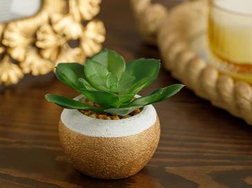 Succulent Ball Vazolu Yapay Çiçek 7,5x7,5x8,5 Cm Yeşil